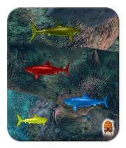 The Simple Joy of Rainbow Sharklings in Creatures 3