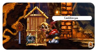 The Dangers of Hanging Around the Deathcap Mushroom