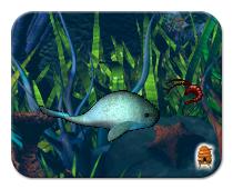 Creatures Aquatilis Caverna Metaroom